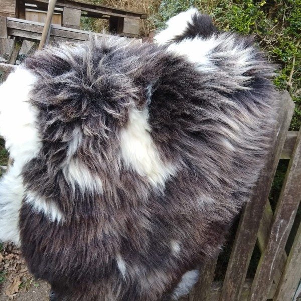 Jacob Sheepskin Rug at Henley Circle Online Shop