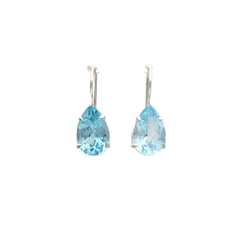 Adicia Hook Earrings – Blue Topaz at Henley Circle Online Shop